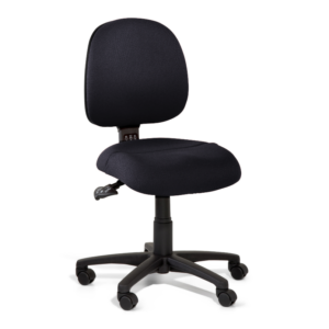 Gregory Inca Medium Back Ergonomic Chair
