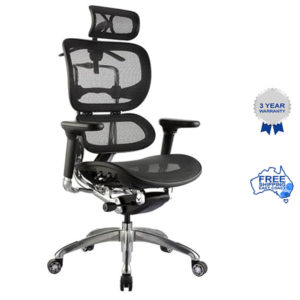 ERGO mesh executive chair