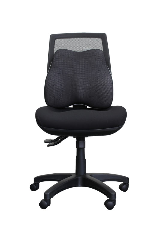 Ergonomic Back Cushion